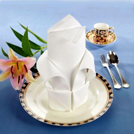 elaborately folded table napkin